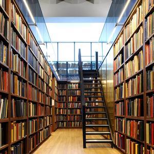 Библиотеки Оленино